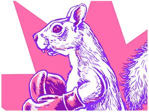 Boxing Squirrel